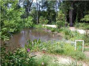 Vacant Land Sold near Summerville, SC