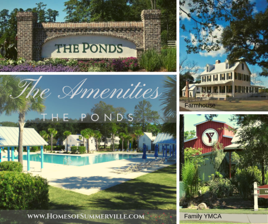 Homes for Sale in The Ponds, Summerville, SC