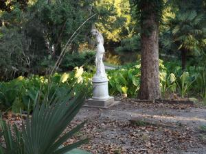 Middleton Place 5 (1)