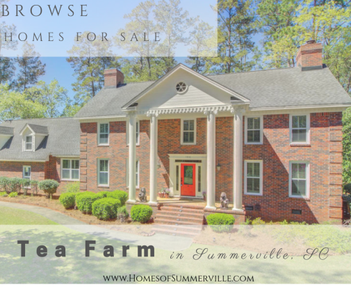 Homes for Sale in Tea Farm in Summerville, SC