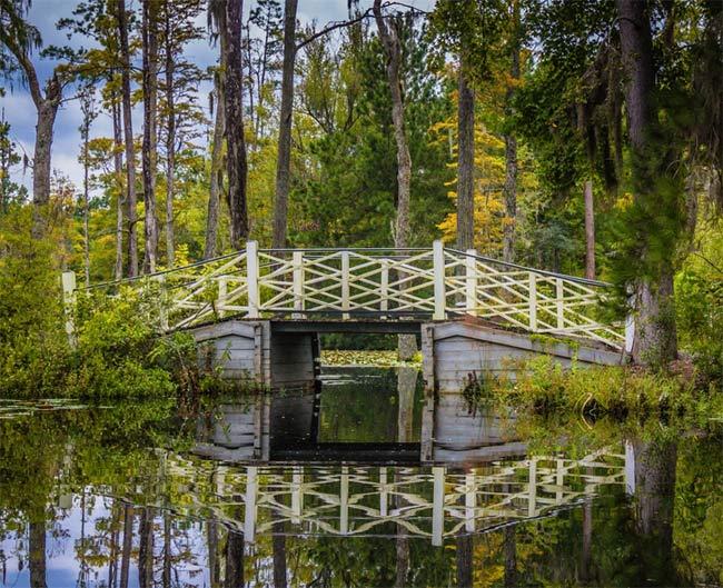 Homes For Sale In Fairmont South Moncks Corner Sc 29461 Summerville Charleston Sc Real Estate