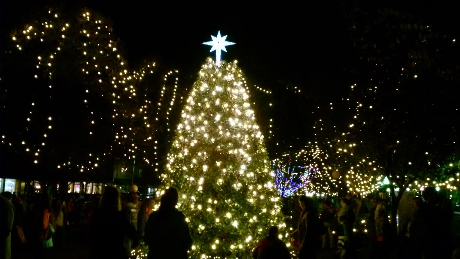 Summerville Christmas Tree Lighting In Summerville Sc