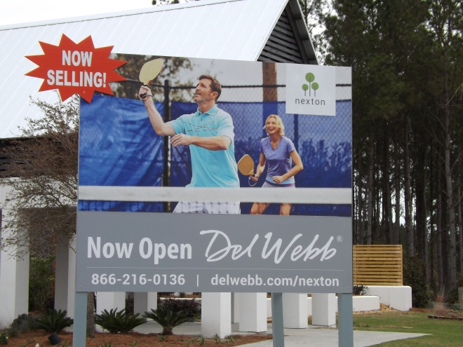Homes for Sale in Del Webb Nexton
