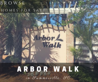 Homes for Sale in Arbor Walk Subdivision - Summerville, SC