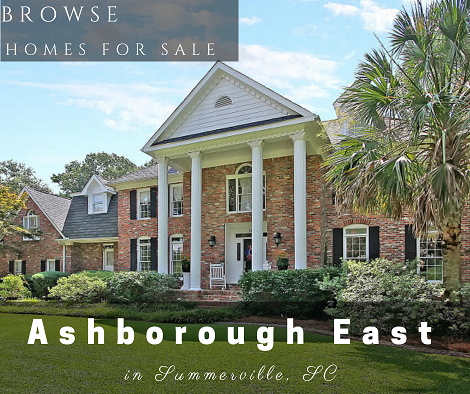 Homes for Sale in Ashborough East Subdivision Summerville, SC
