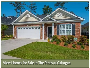 View Homes for Sale in The Pines at Gahagan