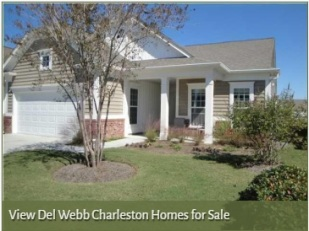 Homes for Sale in Del Webb Charleston