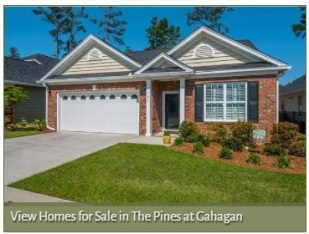 Homes for Sale in The Pines at Gahagan