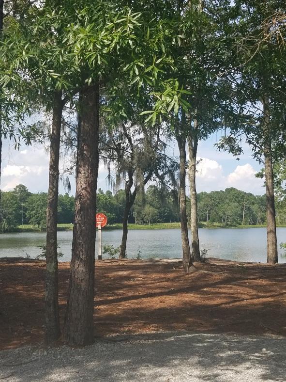 Buffalo Lake in Summers Corner